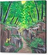 Stone Ravine Canvas Print
