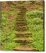 Stone Step Trail 1 Canvas Print