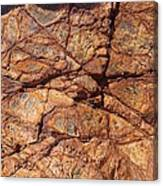 Stone Texture Canvas Print