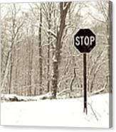 Stop Snowing Canvas Print