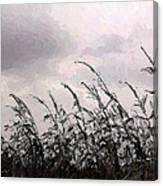 Storm A'comin' Canvas Print