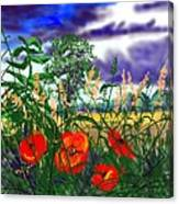 Storm Clouds And Poppies Canvas Print