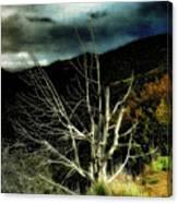 Storm Over The Jemez Mountains Canvas Print