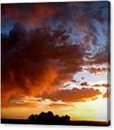Stormy Sunset Over A Tree Canopy Canvas Print