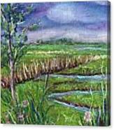 Stormy Wetlands Canvas Print