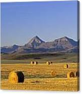 Straw Bales, Pincher Creek, Alberta Canvas Print