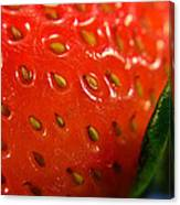 Strawberry Close Up Canvas Print