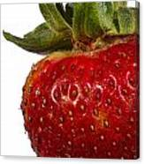 Strawberry Close Up No.0011 Canvas Print