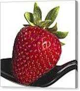 Strawberry On A Black Spoon Against White No.0003 Canvas Print