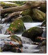 Stream Of Thought Canvas Print