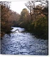 Streams Of Serenity Canvas Print