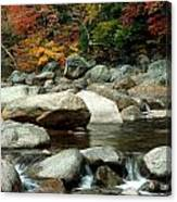 Streamside Color Canvas Print