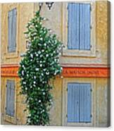 Street Corner In Provence Canvas Print