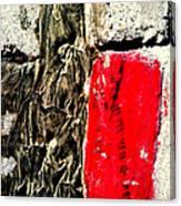 Streets Of Coronado Island 32 Canvas Print
