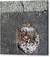 Streets Of Coronado Island  7 Canvas Print