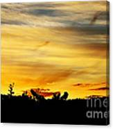 Stripey Sunset Silhouette Canvas Print