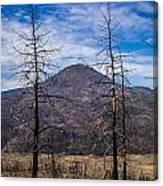Studies On Sugarloaf Peak 2 Canvas Print