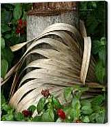 Stump And Fronds Canvas Print