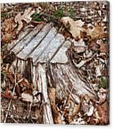 Stumped Canvas Print