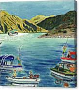 Sturgeon Rodeo Canvas Print