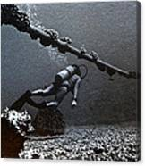 Submarine Telephone Cable And Diver - Hanauma Bay 1973 Canvas Print