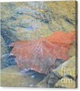 Submergence Canvas Print