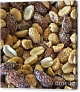 Sugar Coated Mixed Nuts Canvas Print