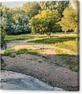 Summer Evening Along The Creek Canvas Print