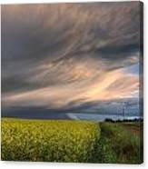 Summer Evening Storm Blowing Over Ripe Canvas Print