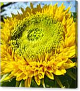 Summer Floral Art Prints Yellow Sunflower Canvas Print