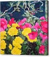 Summer Glory Canvas Print