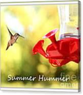 Summer Hummer Poster Canvas Print