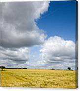 Summer In Saarland Canvas Print