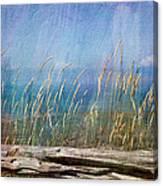 Summer Rendezvous Canvas Print