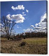 Summer Sky In The Fall Canvas Print