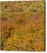 Summit Peak Autumn 15 Canvas Print