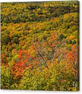 Summit Peak Autumn 6 Canvas Print