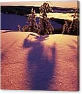Sun Casting Shadows On Snow Covered Canvas Print