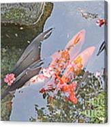 Sun Water Flowers And Fish Canvas Print