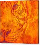 Sunburst Tiger On Fire Canvas Print