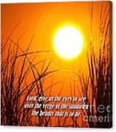 Sundown Beauty Canvas Print