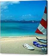 Sunfish On The Beach Canvas Print
