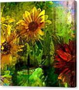 Sunflower 4 Canvas Print