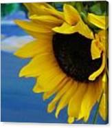 Sunflower One Canvas Print