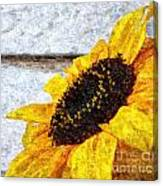 Sunflower Paint Canvas Print