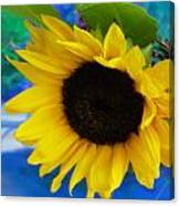 Sunflower Too Canvas Print