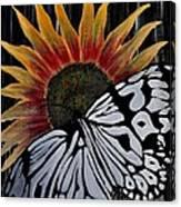 Sunfly Canvas Print