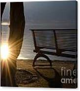 Sunlight And Bench Canvas Print