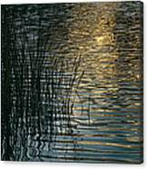 Sunlight Reflects On Rippled Water Canvas Print