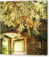 Sunlit Stone Building With Grapevines Canvas Print
